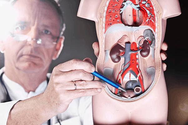 gruczoł krokowy prostata powoduje problemy z oddawaniem moczu a to leczy skutecznie urotrin