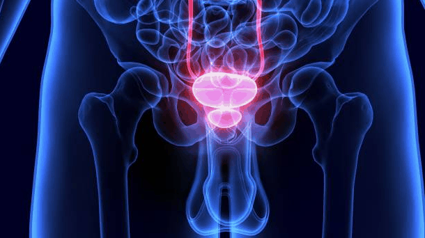 stosowanie suplementu urotrin przynosi efekty przy problemach z prostatą