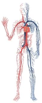 aby uniknąć powikłań zdrowotnych należy kontrolować ciśnienie krwi